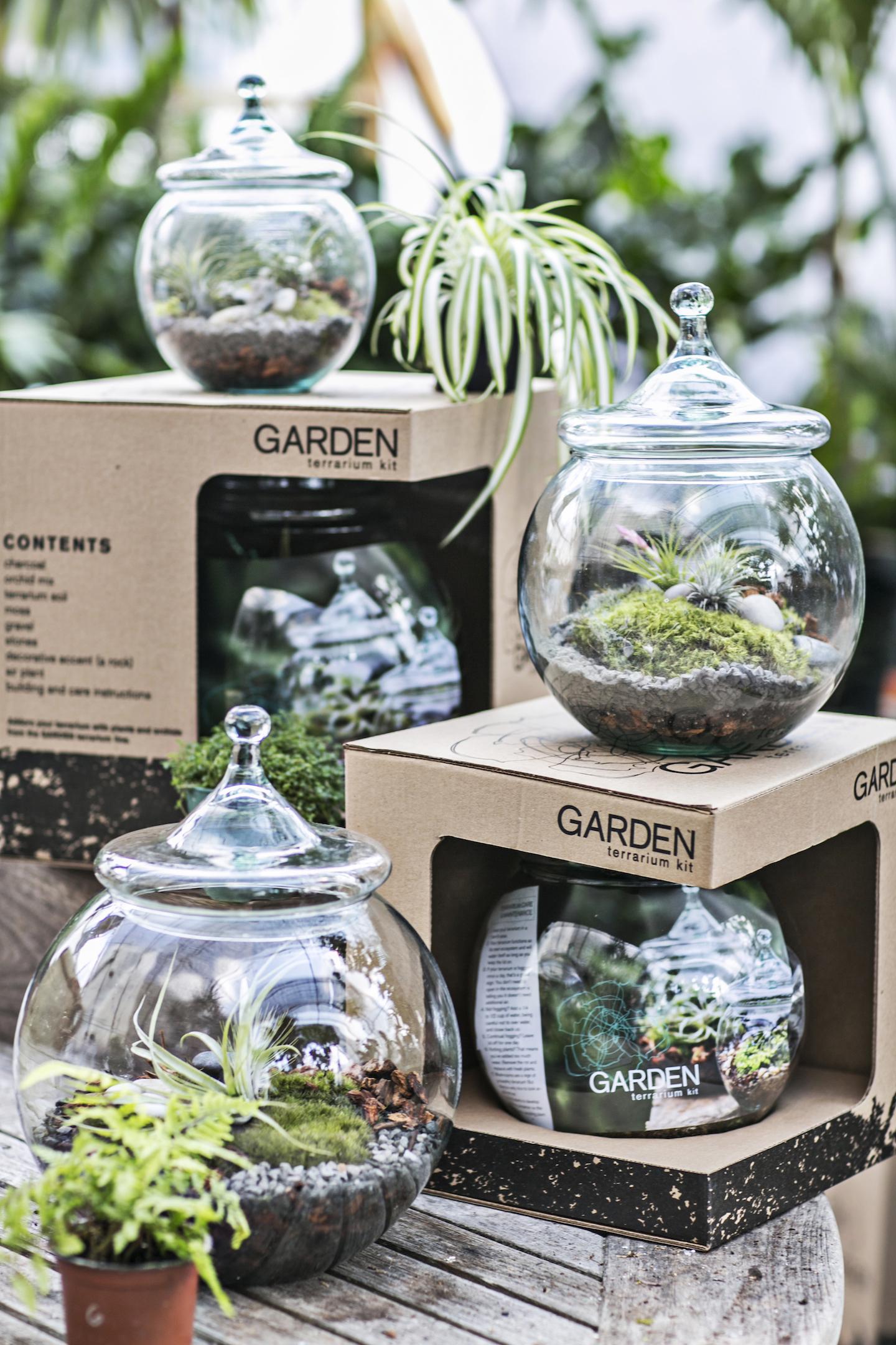 Travelgirl 2013 holiday gift guide part one travelgirlmag - Kit terrarium plante ...