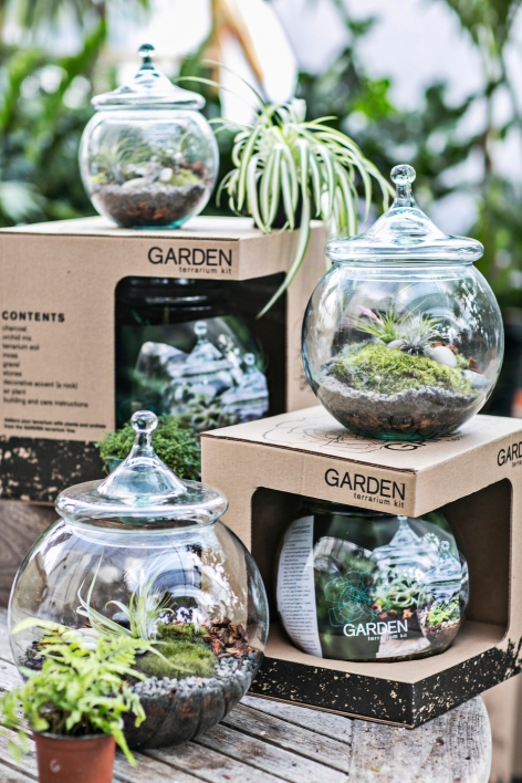 "Developed by a gardener so people could make their own terrarium at home, the GARDEN Terrarium kits are $45 for an 8"" kit; $65 for 10"" and $85 for 12 inch."